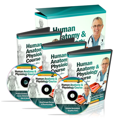Ultimate Home Study Course On Human Anatomy & Physiology